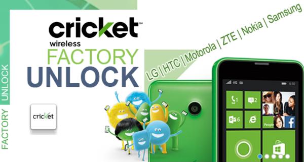 Unlock Cricket Sim